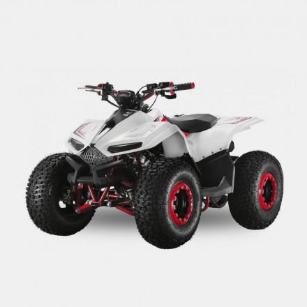 Velocifero E-ATV